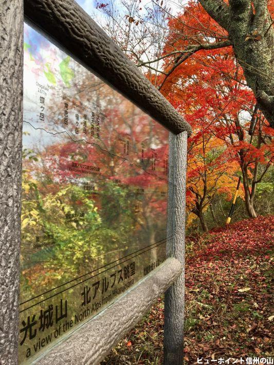 光城山の紅葉