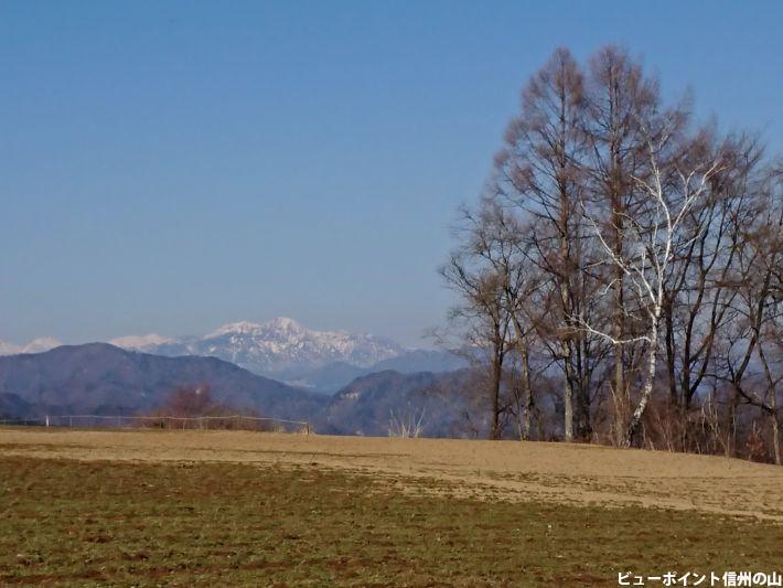 冬木立と高妻山